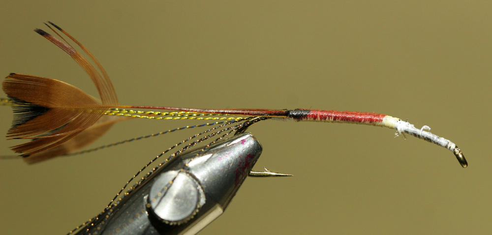 Woven Stonefly - Step 4b