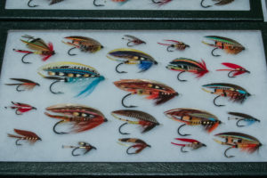 Fly Collection by Royce Stearns